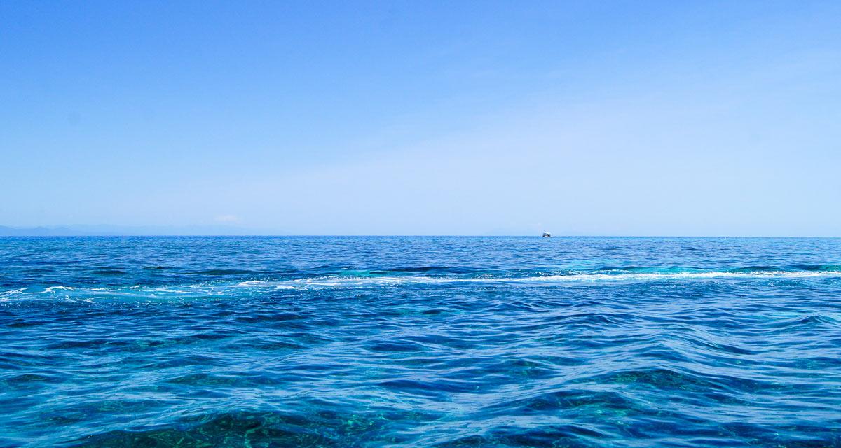 Deep sea fishing florida near port canaveral ambush fishing for Deep sea fishing charters near me